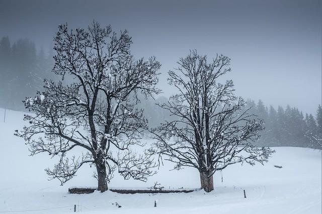 Haute-Savoie, Mont-Blanc, 23