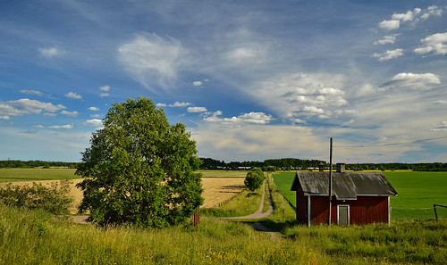 summer finland nature nikond3200 naturephotography countryside domesticanimalfarm maisema maalaismaisema house farm kesä suomi clouds luonto luonnonmaisema larissadatsha taivas rurallandscape country scenery europe