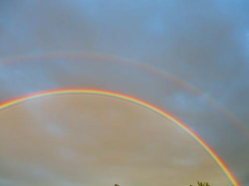 Rainbow | by NomadWarMachine