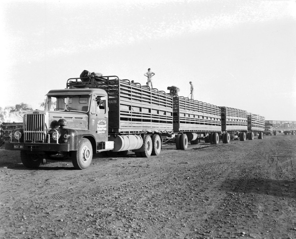 Image result for Leyland Beaver road train