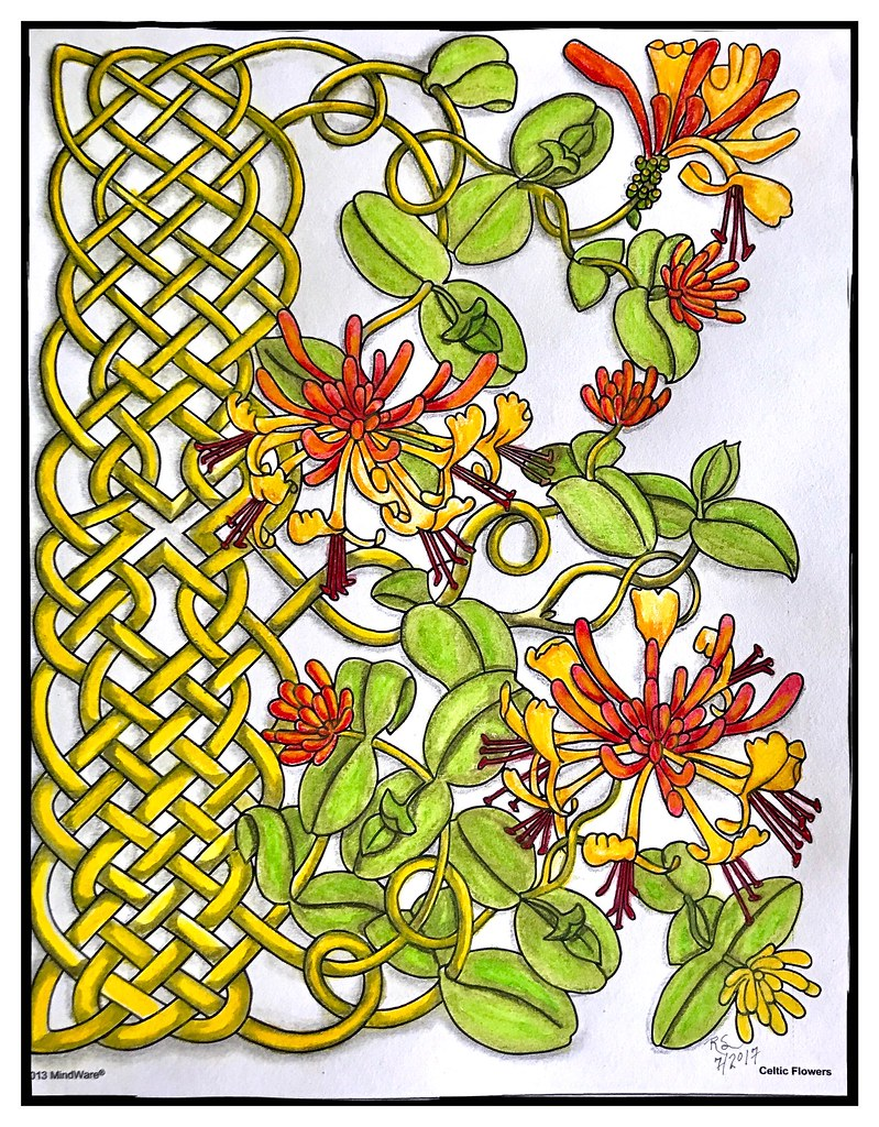Celtic Flowers Coloring Book #4 | Colored in "|799|1024|?|en|2|2894e92fcc7344767b6fa957517a9bae|False|UNLIKELY|0.34304481744766235
