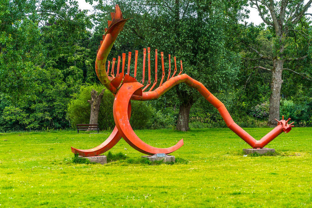 SAURIAN A RED DRAGON IN LEE FIELDS CORK [BY JIM BUCKLEY]-130923
