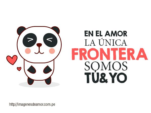 Osito Panda Lindo Osito Panda Con Una Tierna Frase De Amor Flickr