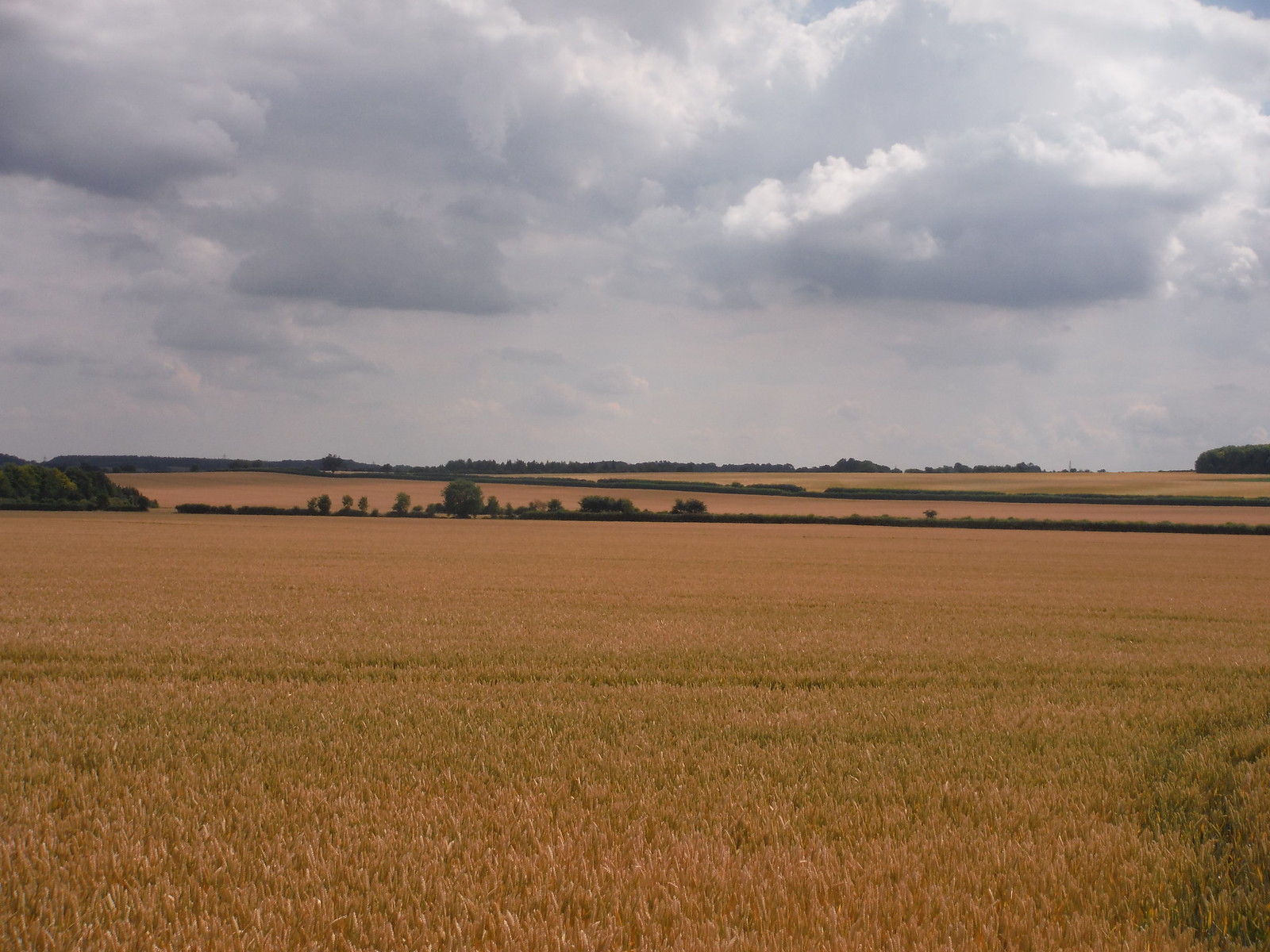Long Views from the Icknield Way SWC Walk 233 - Arlesey to Letchworth Garden City