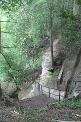 Elora Gorge - Stairway to Gorge