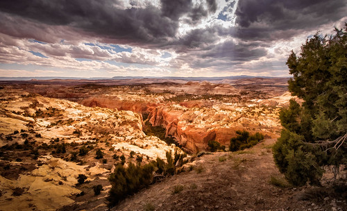 The Escalante - Textured | by byron bauer