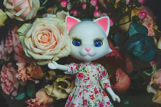 Petworks Nikki | by Ilweranta