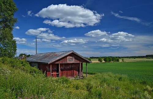 rurallandscape summer finland nature countryside naturephotography country domesticanimalfarm nikond3200 sky landscape clouds maisema maalaismaisema maaseutu maatila house farm kesä suomi luonto luonnonmaisema larissadatsha taivas scenery europe