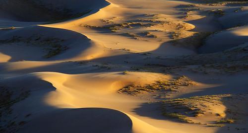 sand dunes khongoriin els mongolia desert gobi deserto dune light shadows ombre duna sunset