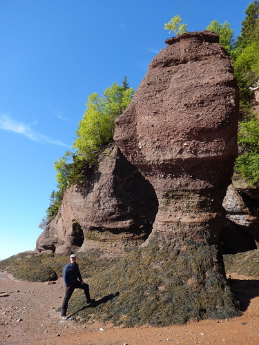 Hopewell Rocks - 3