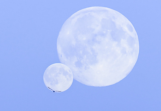 Once in a Blue Moon - 102 of 215