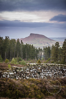 Roseberry Layers