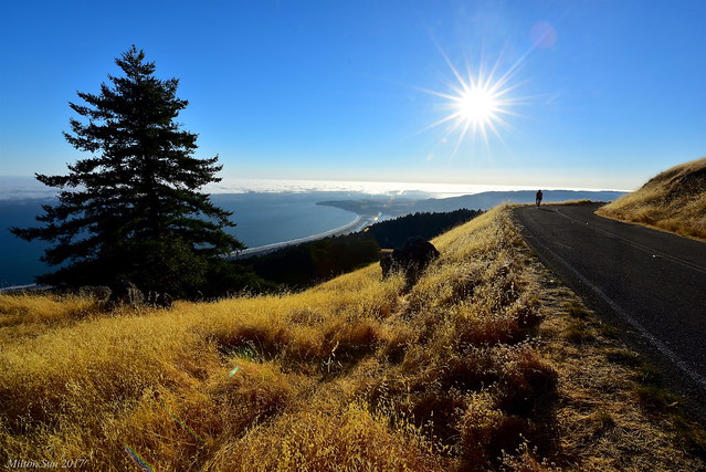 Biking along the Skyline|Marin County, California