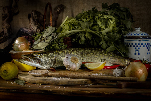 still life fish, Nature morte poisson brochet