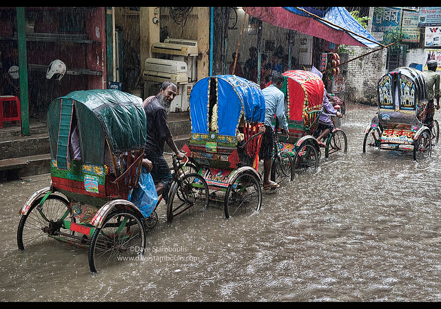 Rickshaws in the monsoon, Dhaka, Bangladesh