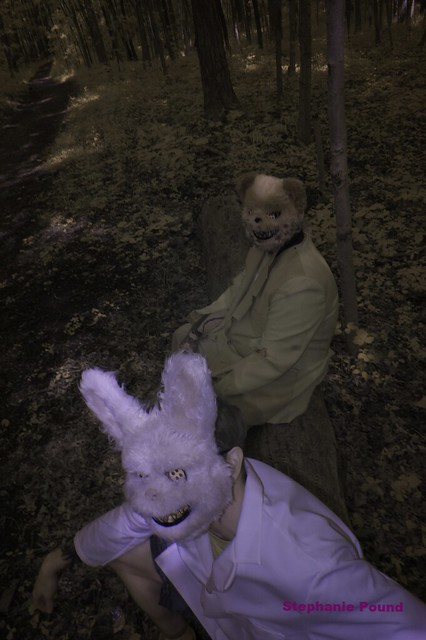 BUNNY AND BEAR (INFRARED)