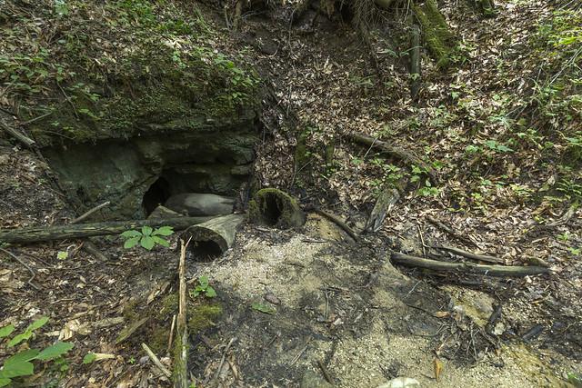 Natural Bridge Cave entrance 2, Natural Bridge State Resort Park, Powell County, Kentucky