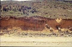 1995-03-25_0958_Peru-489