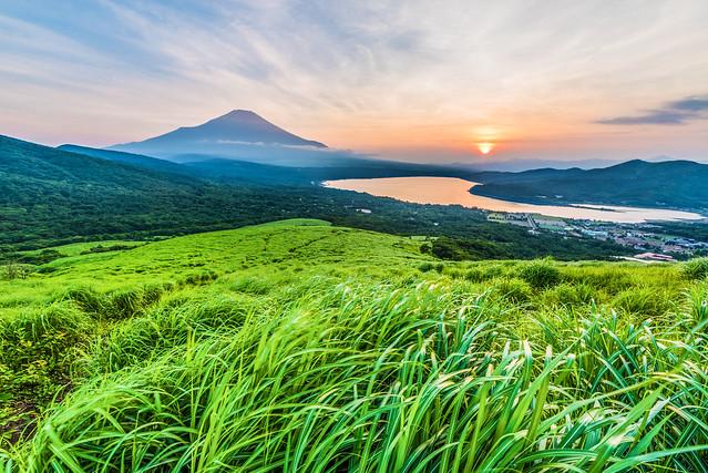 Lush Fuji