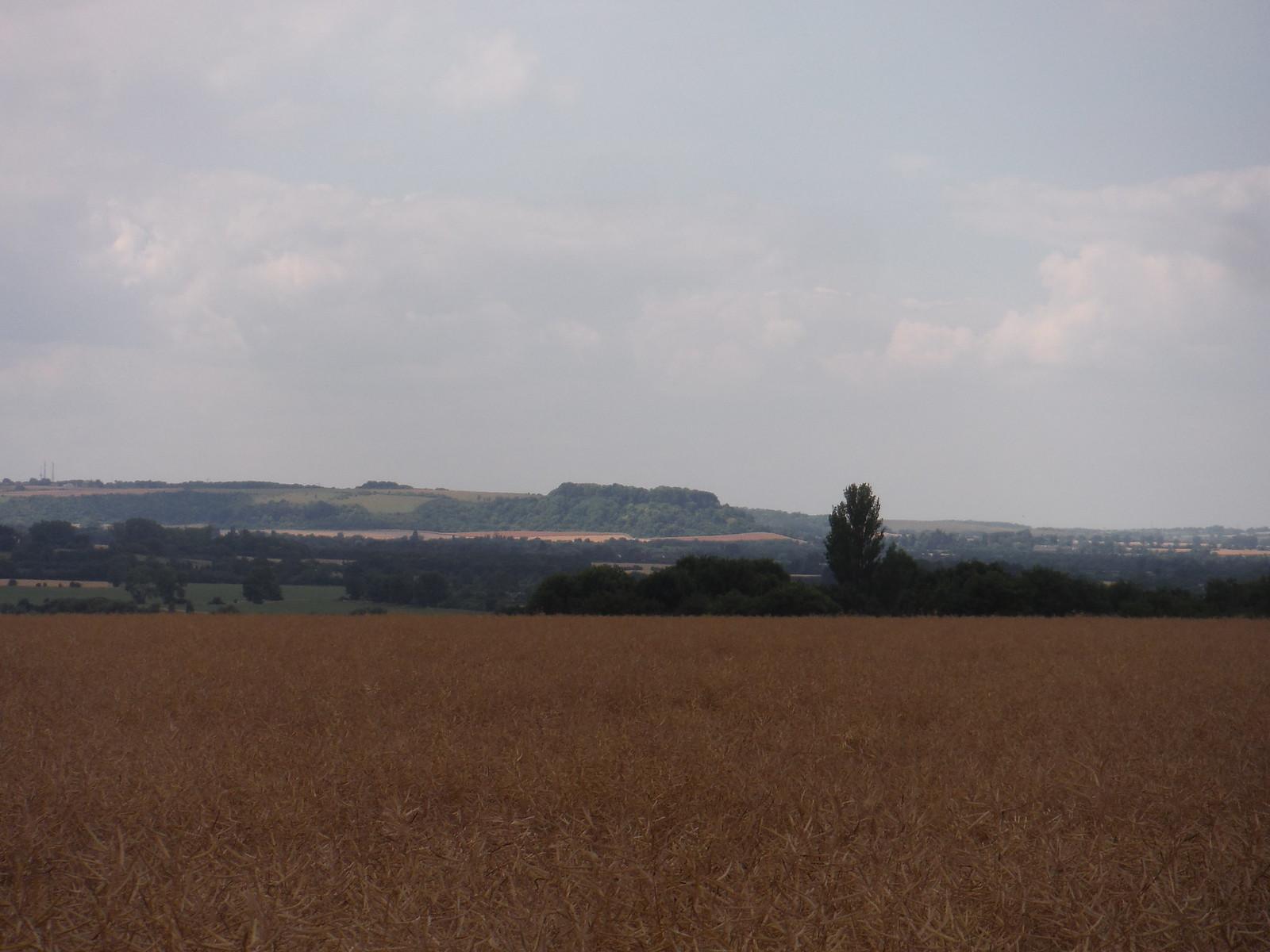 Sharpenhoe Iron Age Hillfort Site SWC Walk 233 - Arlesey to Letchworth Garden City