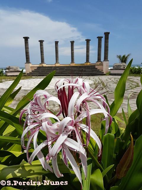 Amphitheater of Tesoro Beach Hotel, Costa del Sol, El Salvador
