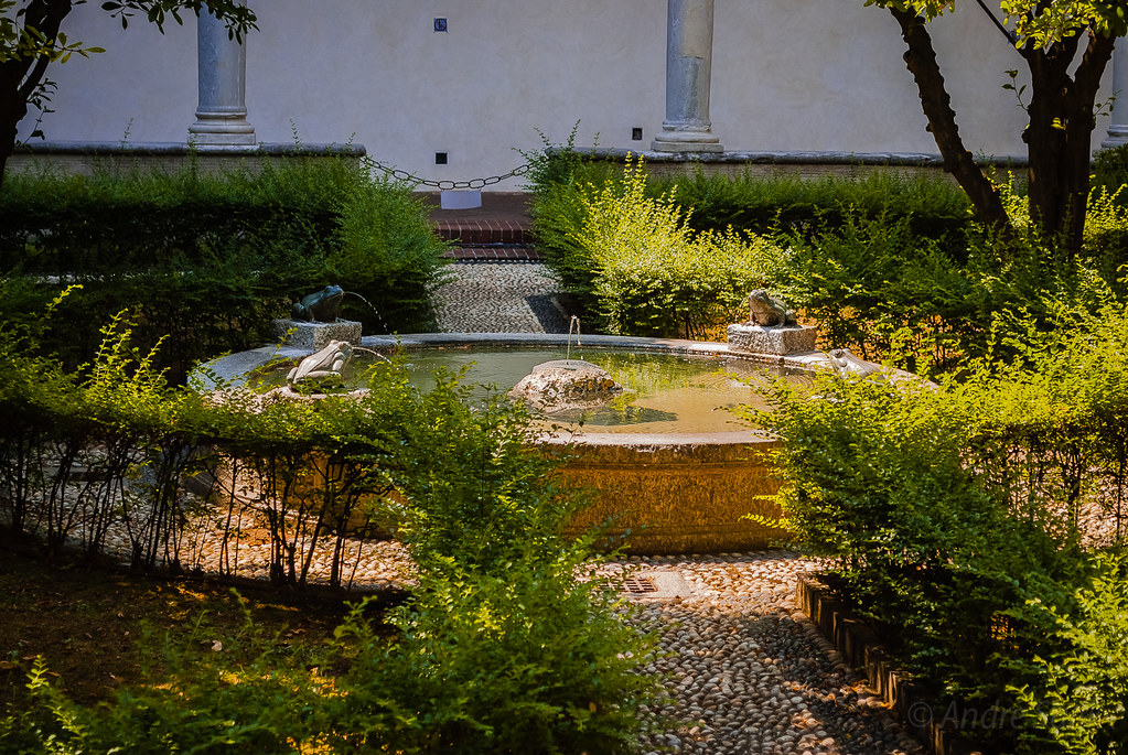 **Magic gardens**  DSC_7185
