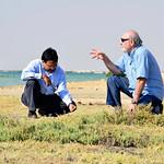 Doha Mangroves11