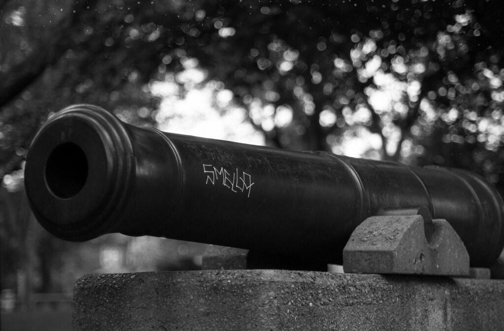 The Riverdale Cannon