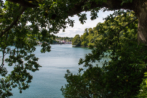 river dart devon greenway dittisham landscape oak trees wooded forested boats moored serene placid water peaceful