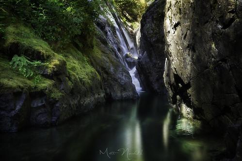 Shades of Green   by Matt Newfield