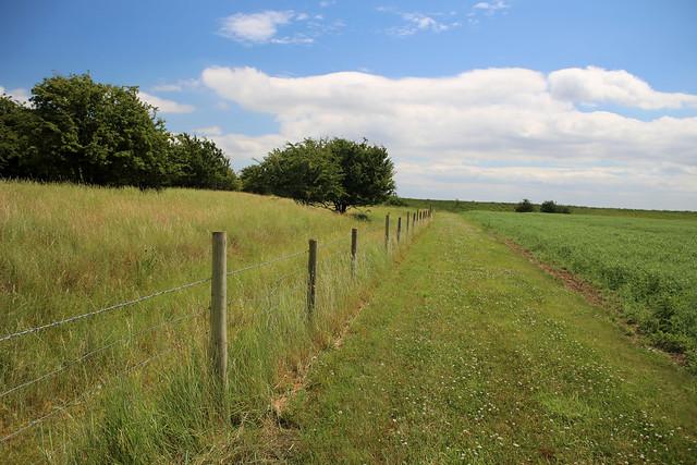 Near Welwick
