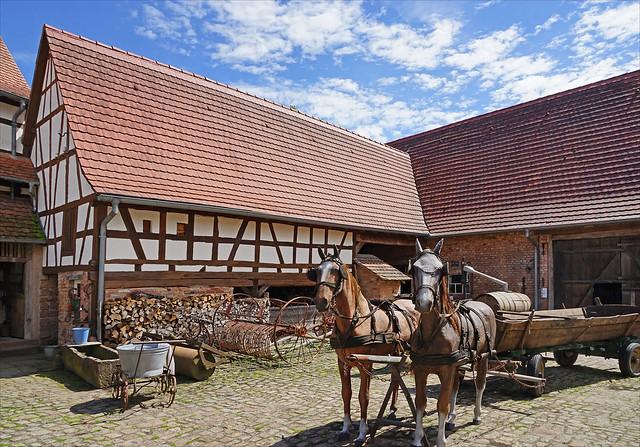 La cour de la maison rurale de l'outre-forêt (Kutzenhausen)