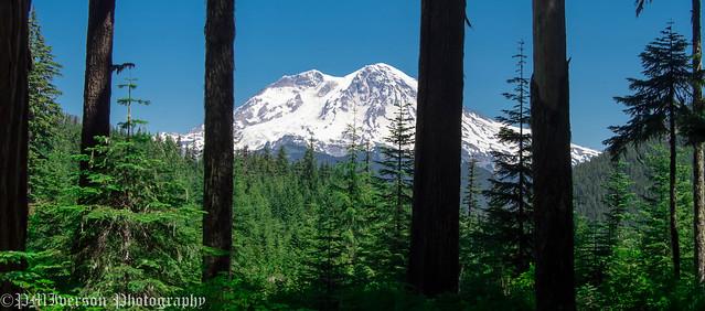Bars Blocking View Of Mount Rainier