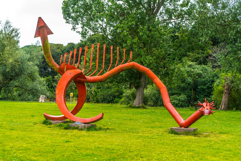 SAURIAN A RED DRAGON IN LEE FIELDS CORK [BY JIM BUCKLEY]-130924