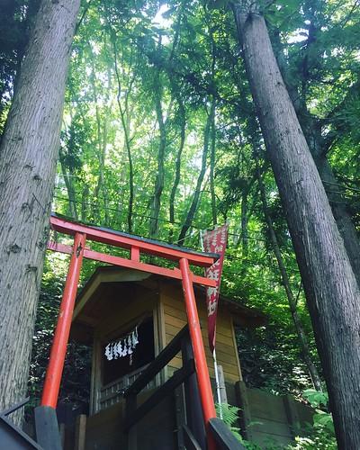 shrine 神社 鳥居 日本 岩手 久慈 japan iwate