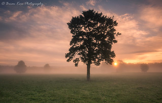 Morning Mist | by .Brian Kerr Photography.