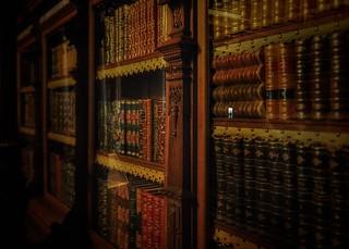 Royal Books and a Secret Entrance | by stefanjurca