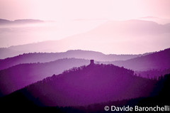 Davide Baronchelli-3