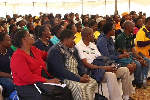 Career Guidance Day | by DREAMSInnovationChallenge