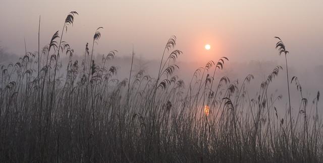 At the break of dawn