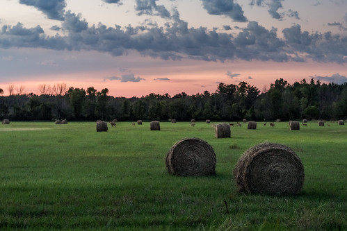 canoneos5dmarkiv hayfield deer field cloud sunset evening roundbale bale hay atardecer july summer verano mi michigan midland midmichigan