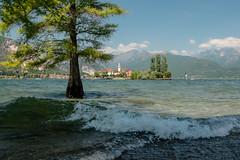 Danau Maggiore