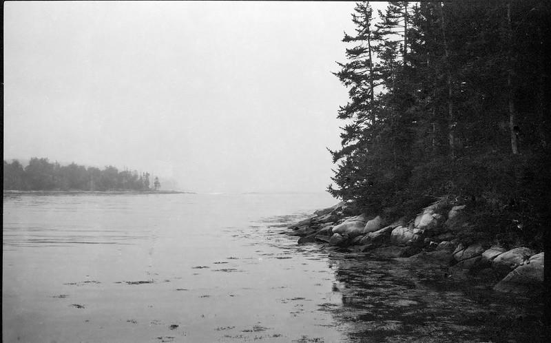 shoreline, tidal, ocean, fog, conifer trees, Clark Island, Maine, Ercona II, arista.edu 200, Moersch Eco Film Developer, September 2016
