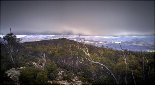 australia tasmania derwentvalley platformpeak wellingtonrange newnorfolk trees hills mountain mountains clouds weather view scene scenery tasmanianscenery tasmaniancountryside v10 lgv10 mobilephone trainsintasmania bushwalking walk walking stevebromley
