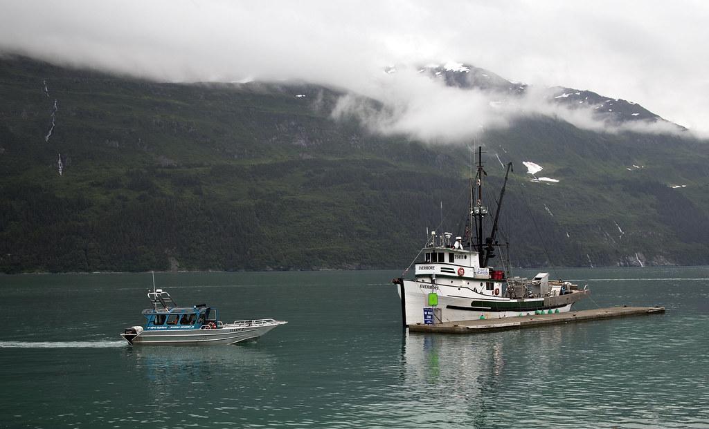 Prince William Sound Whittier Alaska - fishing boats