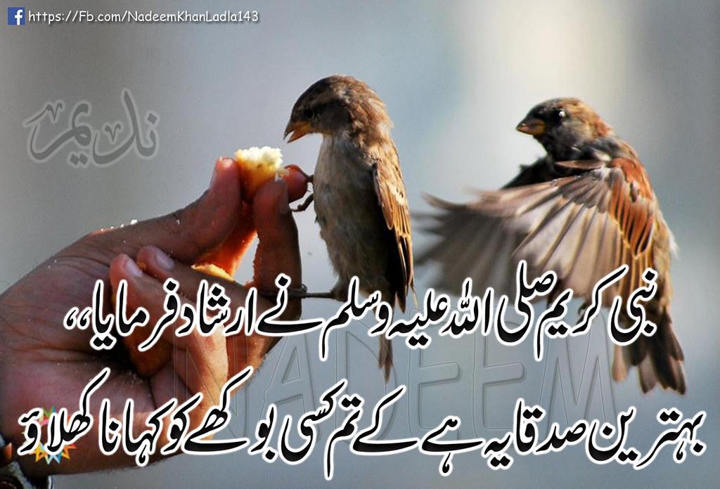 Achi baatein Hadees Urdu Shayari 2 Line Poetry Bewafai Poe
