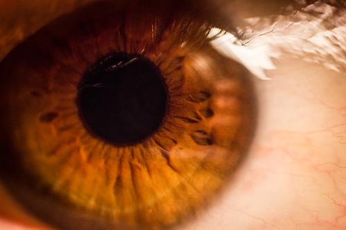 Look into my eye!   by Thomas Maluck Foto/Film