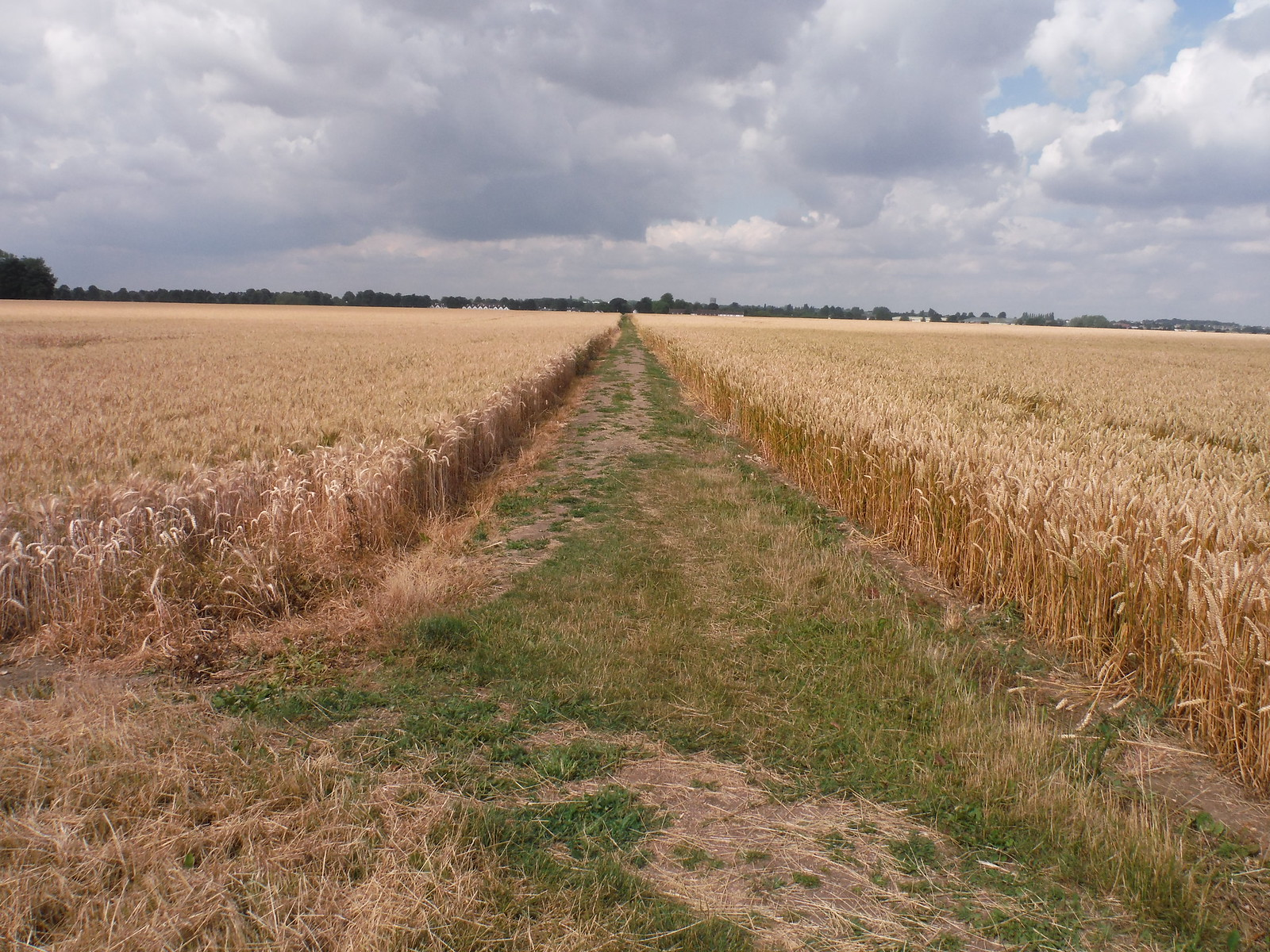 Usually well-cleared path through arable fields SWC Walk 233 - Arlesey to Letchworth Garden City