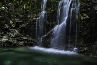 Pools of Emerald | by Matt Newfield