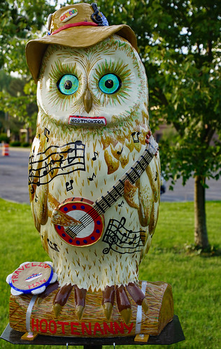 hootoftheowl coxsackieny coxsackie greenecounty whatahoot tamron16300mm fiberglasspublicart publicart owl hudsonvalley